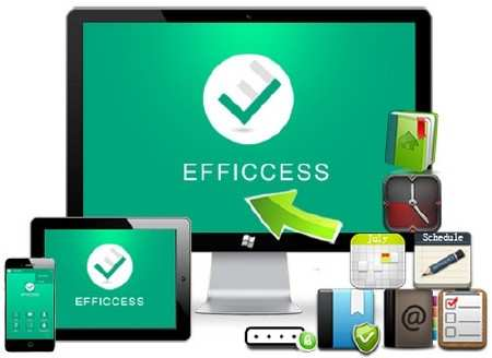 Efficcess Pro 5.10 Build 511 + Portable